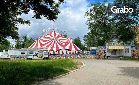 Вход за спектакъл на Цирк Арена - на 28, 29, 30, 31 Юли и 1 Август
