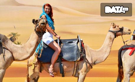 Забавление край Несебър! Вход за атракционен парк с камили, беседа и хранене на животните - без или със снимка