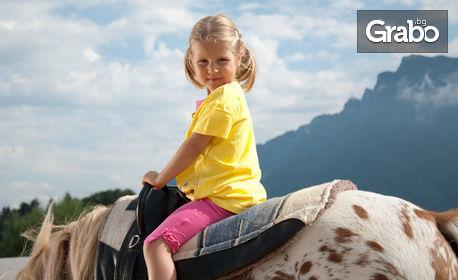 60 минути урок по езда по метода Natural Horsemanship - край София