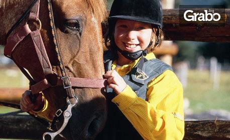Урок по конна езда с треньор - за 15лв