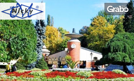 За 3 Март в Сърбия! Посети Ниш, Върнячка баня и Крушевац с 2 нощувки със закуски и вечери, едната празнична, обяд и транспорт