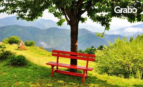 Лятна почивка в сърцето на Родопите! 2 или 3 нощувки за двама със закуски и вечери