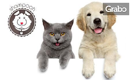 Подстригване, къпане, разресване, изсушаване и рязане на нокти на куче или котка