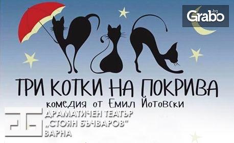 """Комедията """"Три котки на покрива"""" на 18 Юни"""