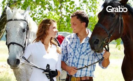 1 урок по конна езда за начинаещи