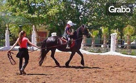 15 минути езда с расов кон в Замъка в Равадиново, плюс входна такса и обяд