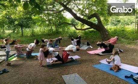4 посещения на сутрешна или вечерна йога за начинаещи
