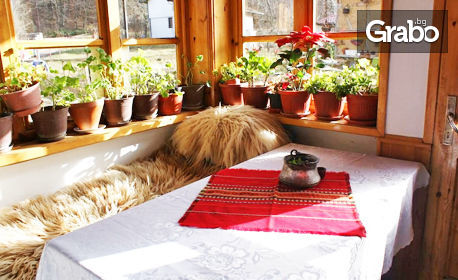Домашен уют в сърцето на Стара планина, край Етрополе! Нощувка в бунгало или къща - с. Ямна