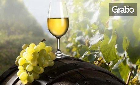 Дегустация на 4 вида вина, разходка из Винарна Владиславово и 1 бутилка вино по избор