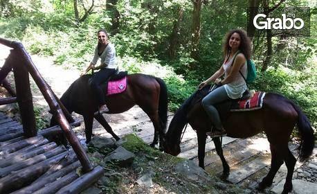 4 урока по конна езда, плюс 2 часа разходка с кон в природен парк Витоша