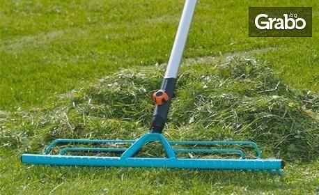 Пръскане срещу насекоми, бълхи и кърлежи или косене, събиране и извозване на трева с площ до 1000кв.м