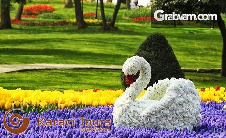За Фестивала на лалето в Истанбул! Екскурзия с 2 нощувки със закуски, плюс транспорт и посещение на Одрин
