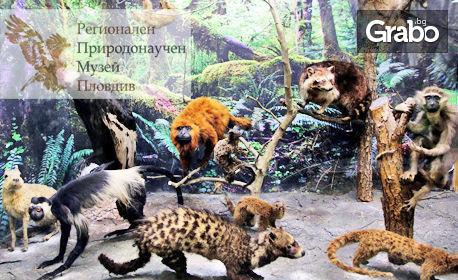 Семеен вход за Регионален природонаучен музей - Пловдив! Разглеждане на експозицията - за двама възрастни с до две деца