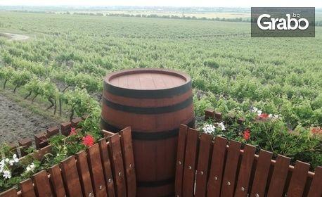 Дегустация на вино за двама, плюс обиколка, беседа и мезета - край Пловдив