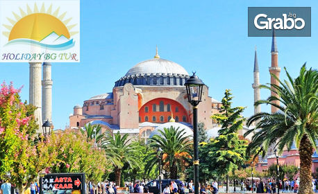 За Фестивал на лалето в Истанбул! 2 нощувки със закуски, плюс транспорт и посещение на Мол Forum, Виапорт Венеция и небостъргача Сапфир