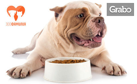 Онлайн изготвяне на индивидуален хранителен и хигиенен режим на куче, плюс консултация