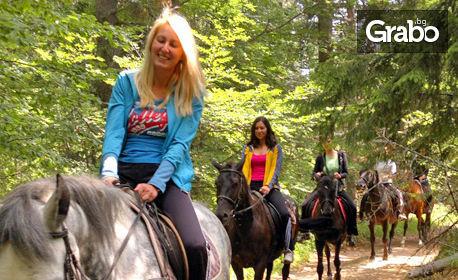 2 часа конен поход за начинаещи в Родопите