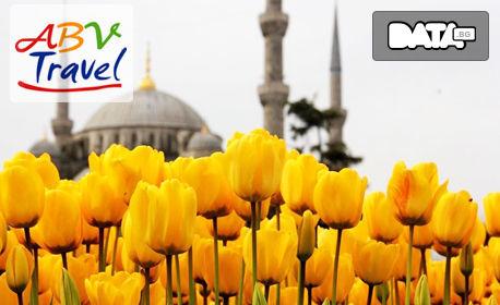 Екскурзия за Фестивала на лалето в Истанбул! 3 нощувки със закуски, плюс транспорт