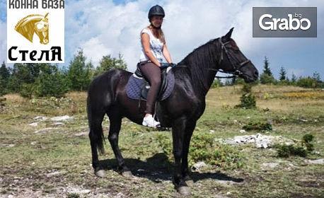 2 часа разходка с кон за начинаещи, с квалифициран инструктор - на 30 минути от Пловдив, в Родопите