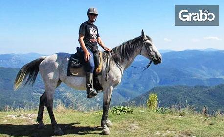 Забавление в Родопите! 2 часа разходка с кон за начинаещи - с квалифициран инструктор