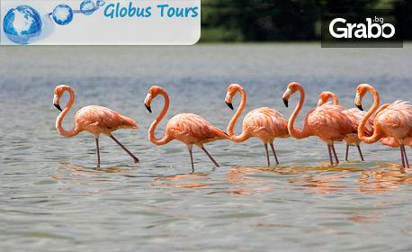 Еднодневна екскурзия до езерото на пеликаните и фламингото - Керкини и манастира Св. Йоан Кръстител