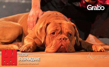 """Гледайте авторския спектакъл на Ованес Торосян """"Февруари"""" - на 7 Юни"""