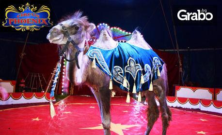 Вход за спектакъл на Цирк Феникс в Благоевград - от 13 до 23 Май