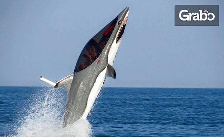 """Най-новият воден атракцион в България и Европа! 15-минутно екстремно гмуркане с """"Акула"""" в Слънчев бряг"""
