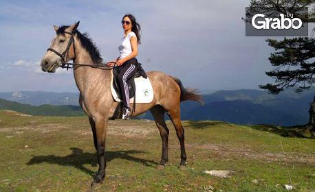 Двучасова разходка с кон за начинаещи, с инструктор - само на 30 минути от Пловдив