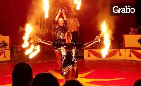 Вход за спектакъл на Цирк Арлекино с 40 животни - от 12 Юни до 12 Юли
