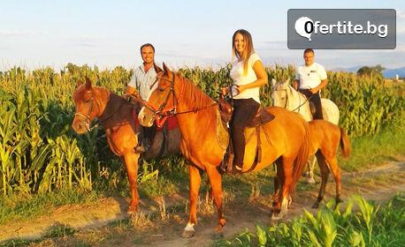 Забавление край Пловдив! Урок по конна езда или разходка с кон - за начинаещи или напреднали