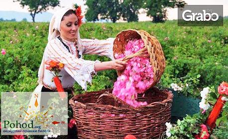 изображение за оферта Посети Розовата долина през Май или Юни! Еднодневна екскурзия до Казанлък и розоварната в с. Търничане, от Поход