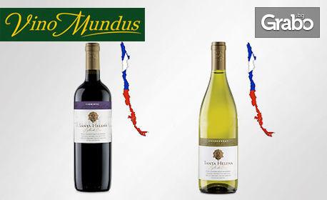 2 бутилки вино Сило Д'Оро, по избор бяло или червено