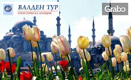 Посети Истанбул за Фестивала на лалето! 2 нощувки със закуски, плюс транспорт и посещение на Одрин