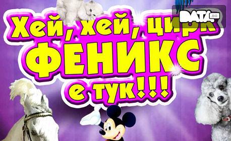 Вход за спектакъл на Цирк Феникс - от 14 до 24 Ноември