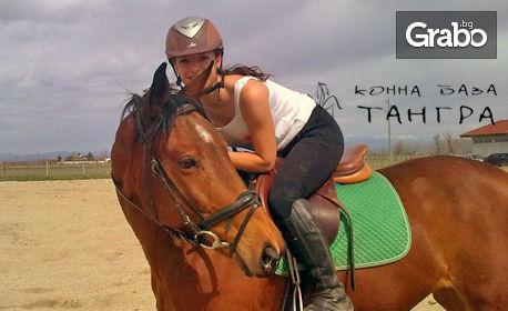 Заредете се с енергия! 30 минути конна езда с инструктор