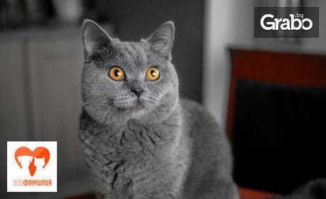 Месечно меню за котки - 3кг суха храна и 4 броя пастет, плюс силиконова тоалетна и таблетки за дъвчене